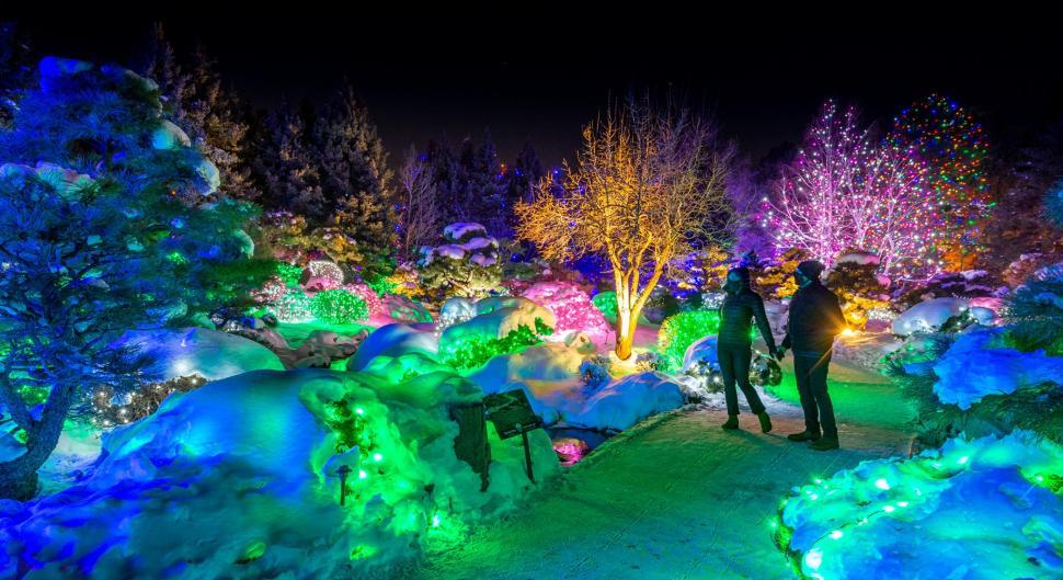 124464348 10158694517214909 918625725363606413 o - Blossoms Of Light Denver Botanic Gardens December 10